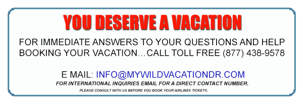 YOU DESERVE A VACATION For immediate answers to your questions and help booking your vacation…. CALL Toll Free 1-877-438-9578 E MAIL: mwvinfo@yahoo.com