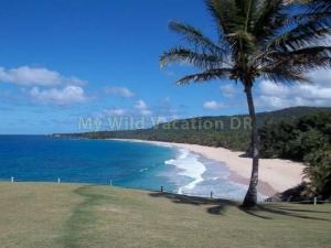 Playa Grande View