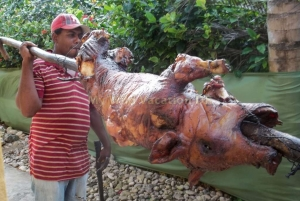 112  Roast Pig At The Villas