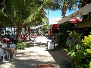 Cabarete Afternoon Pub Crawl